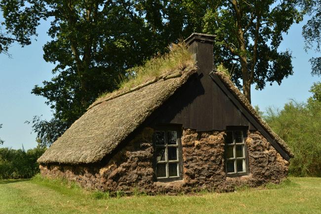 Die frühe Form der Dachbegrünung
